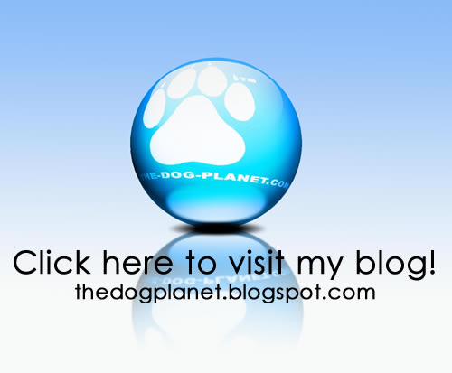 Click to visit my Blog!.